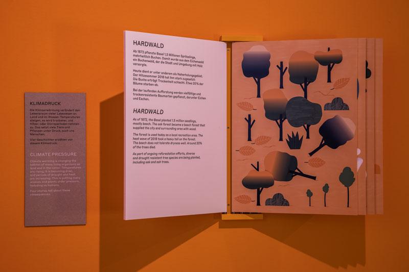 Ausstellungsraum mit einem Buch, in dem die Beschreibung vom Hardwald steht.