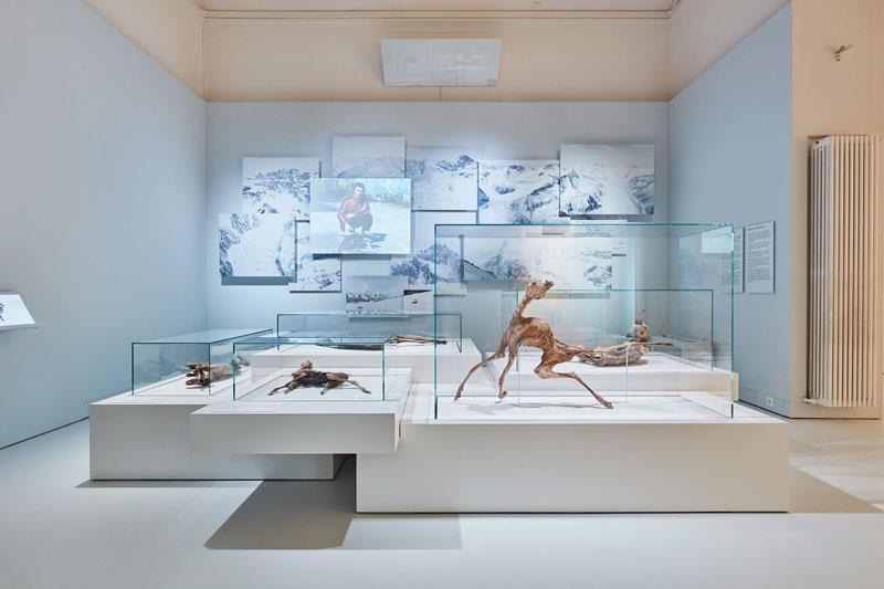 Ausstellungsraum mit Gletschermumien aus der Schweiz.